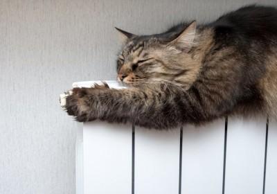 Очередное подорожание отопления и горячей воды, альтернатива - твердотопливный котел!>